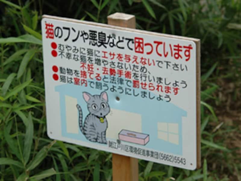 猫が悪いわけではないのです