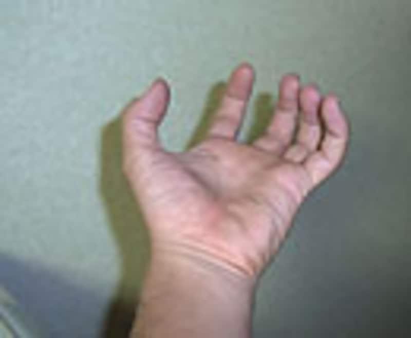ヘビのハンドリングでの手の開き方