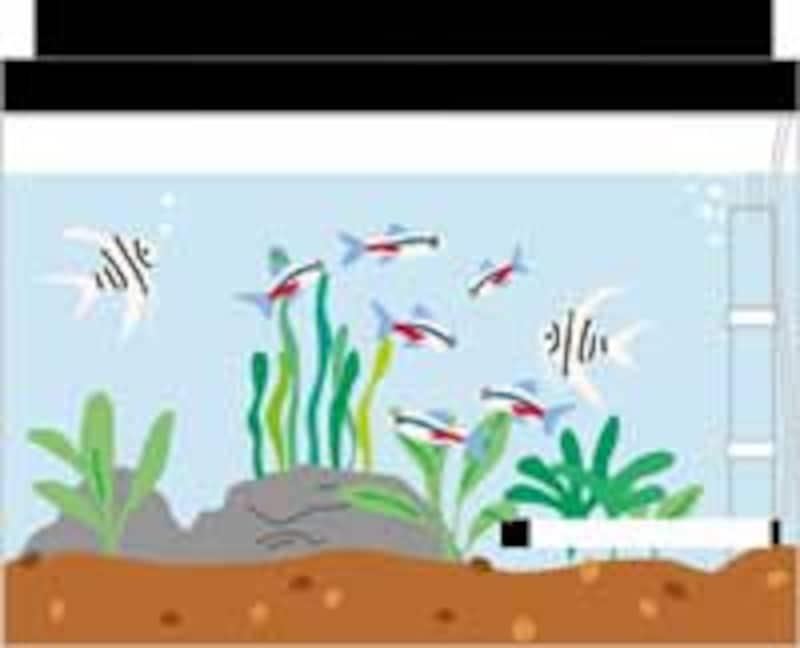 水槽イメージ