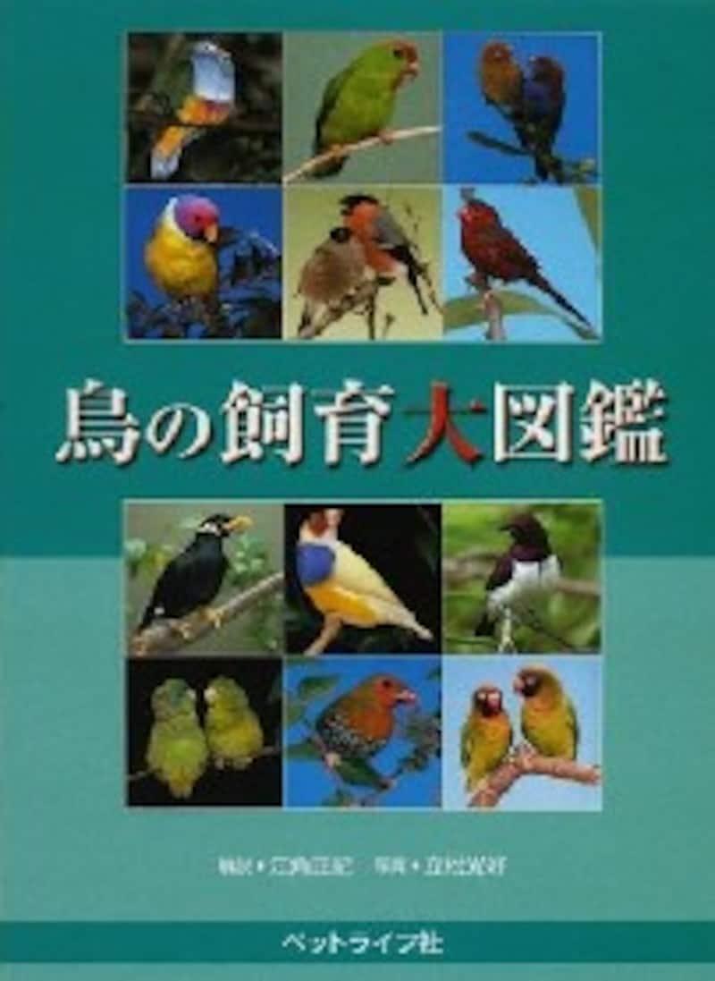 鳥の飼鳥大図鑑
