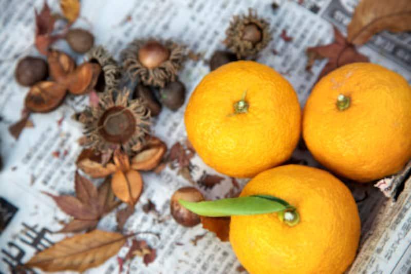 柚子の種を利用した化粧水の作り方!美肌に効く再利用法