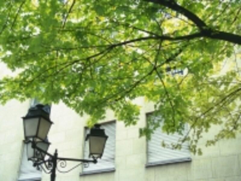 一人暮らしの引越で近所へのあいさつは必要?