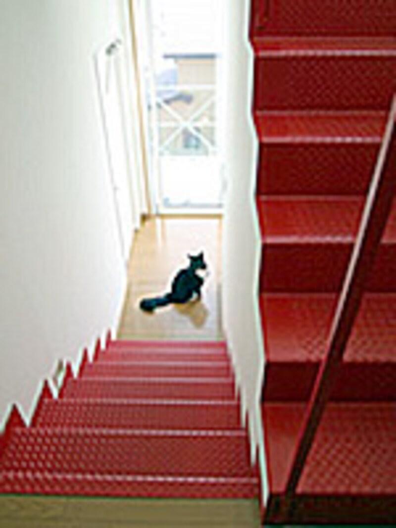 引越し、階段