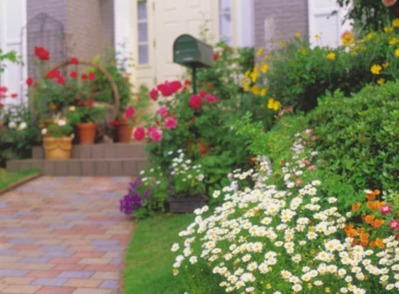 花壇の作り方の基礎知識を身につけよう