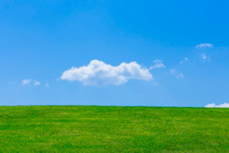 高麗芝は色あせるが、雑草駆除の好機