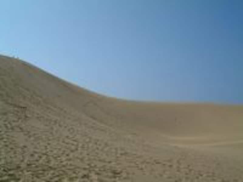 《鳥取》鳥取砂丘
