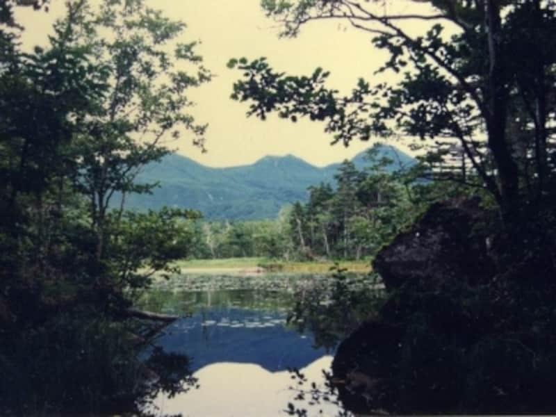 【北海道】知床・知床五湖2湖