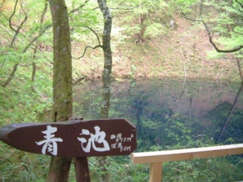 【青森】十二湖・青池