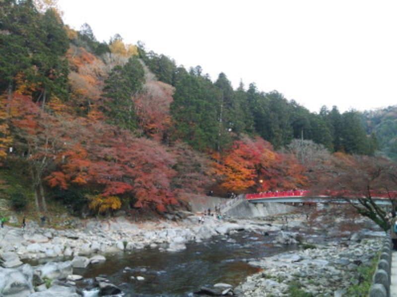 愛知/香嵐渓の紅葉