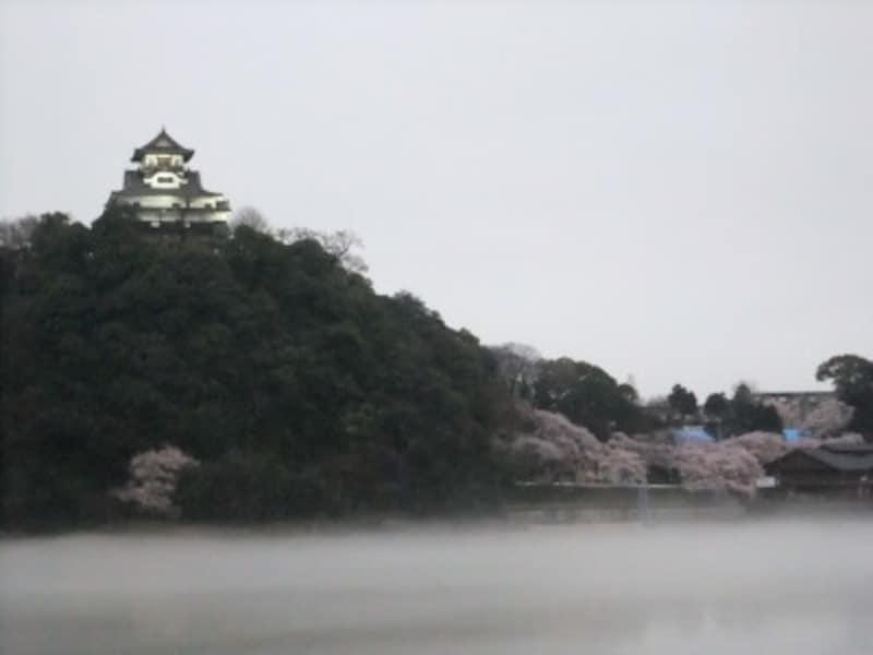 愛知/犬山城