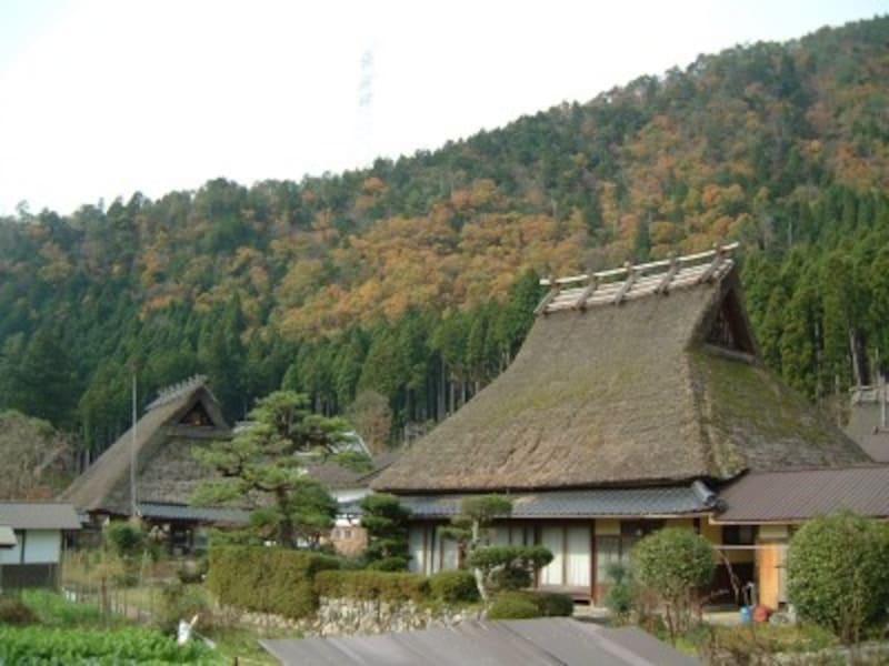 京都・美山かやぶきの里