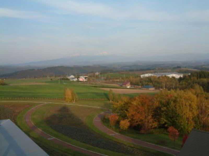 美瑛・北西の丘展望公園から眺める紅葉
