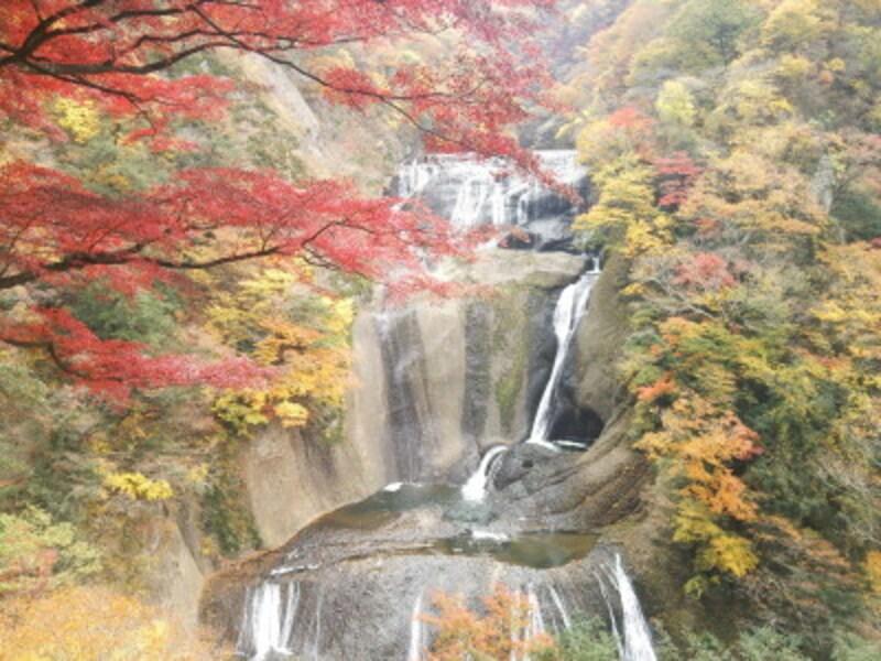 袋田の滝の紅葉・黄葉