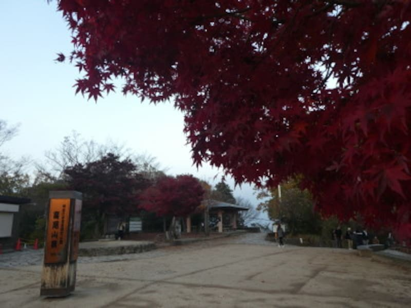 高尾山頂の紅葉