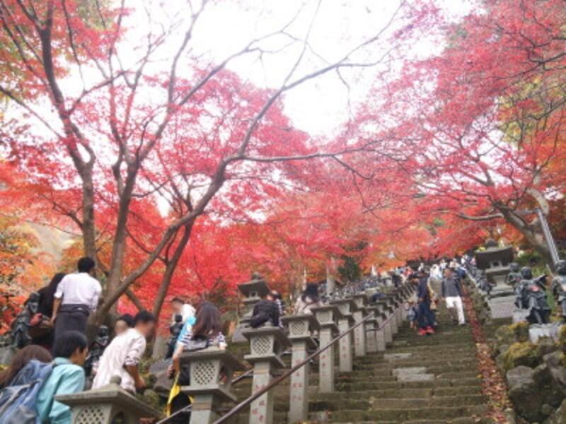 大山不動尊の紅葉