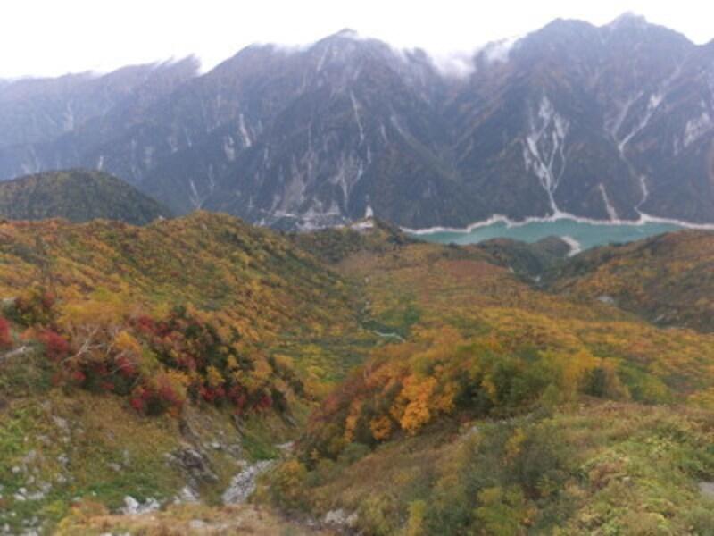 大観峰から眺める黒部ダムと紅葉