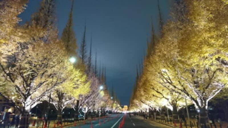 神宮外苑のいちょう並木ライトアップ