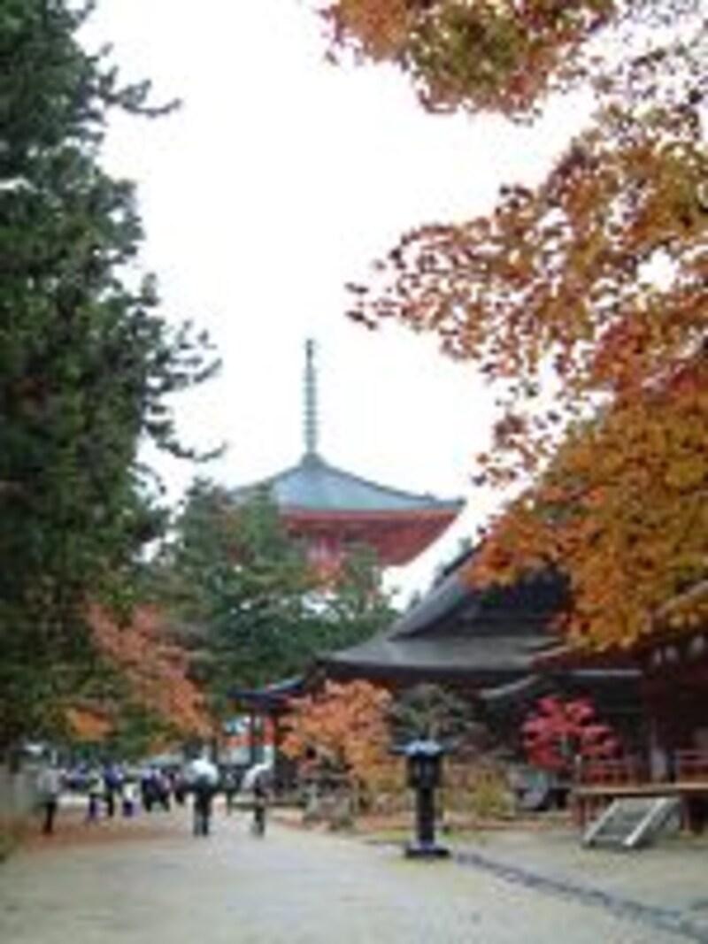 【和歌山】高野山・根本大塔と紅葉