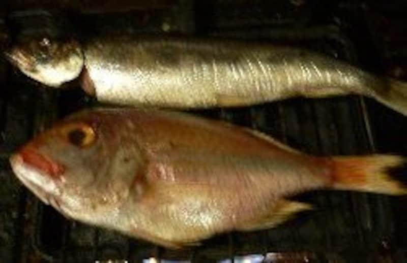 焼き網より大きい魚