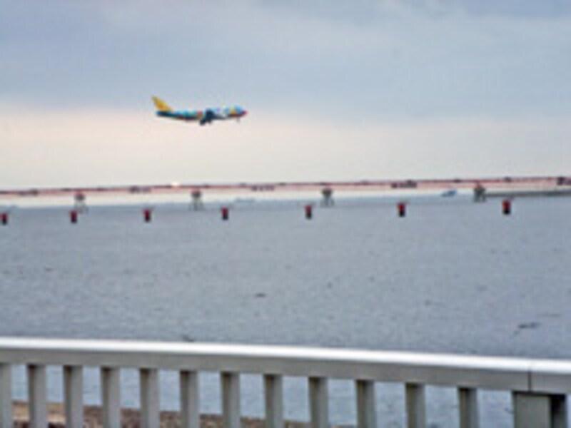 京浜島つばさ公園機体