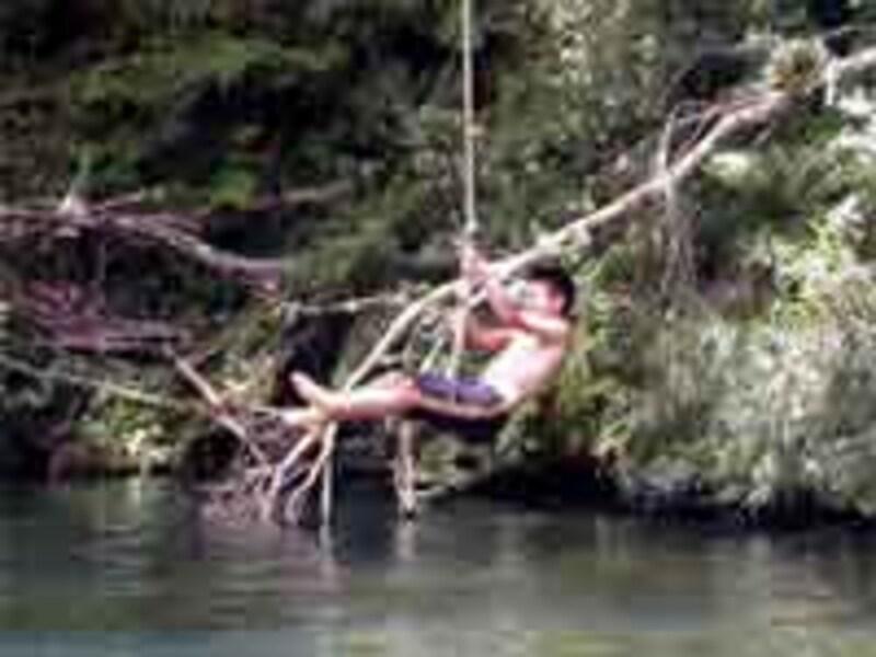 ロープから水に飛び込んでいます