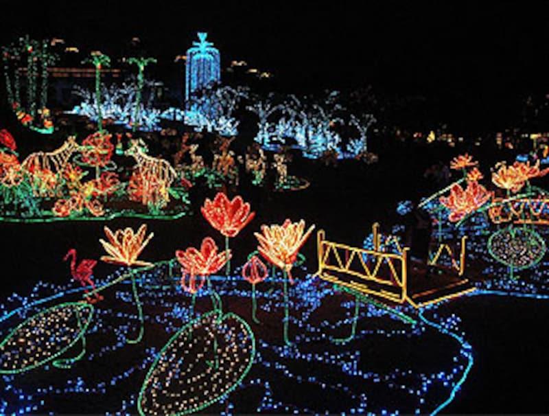 東南植物楽園のイルミネーション