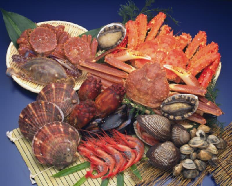 魚介類のカロリー