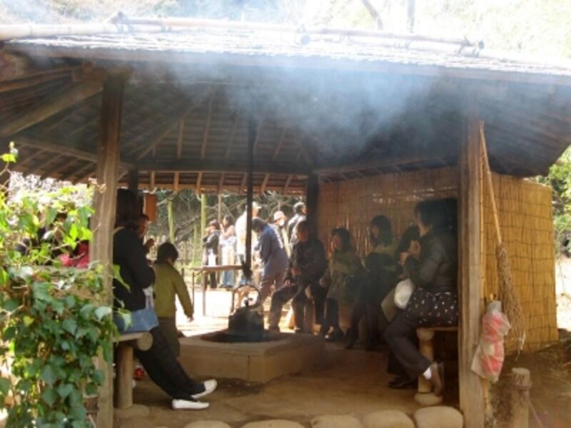 観梅会の時期、初音茶屋(はつねぢゃや)では、無料で麦茶がふるまわれます