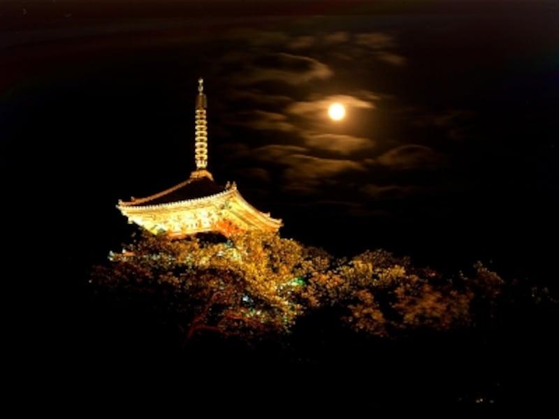 ライトアップされた三重塔と中秋の名月とのコラボレーションが楽しめます(画像提供:三溪園)