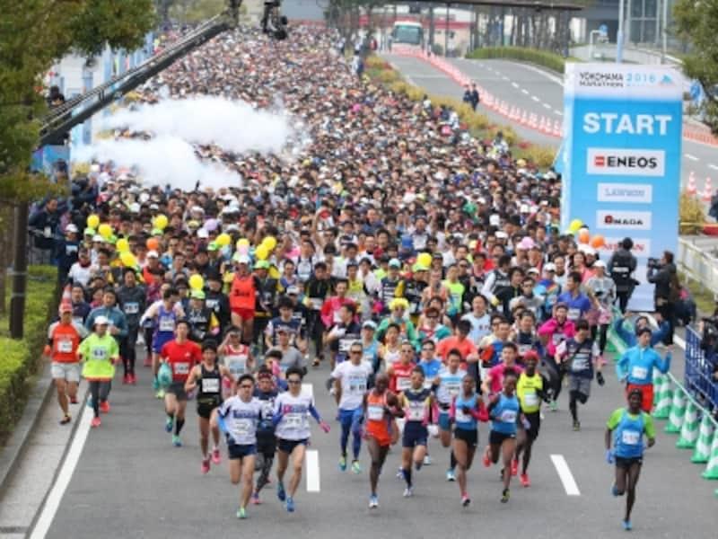 横浜観光地を走り抜ける市民ランナーを声援で後押ししよう!(画像提供:横浜マラソン組織委員会)