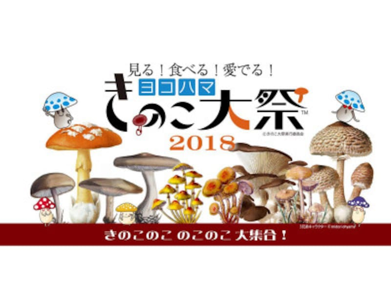 「ヨコハマきのこ大祭2018」メインビジュアル(画像提供:ヨコハマきのこ大祭実行委員会)