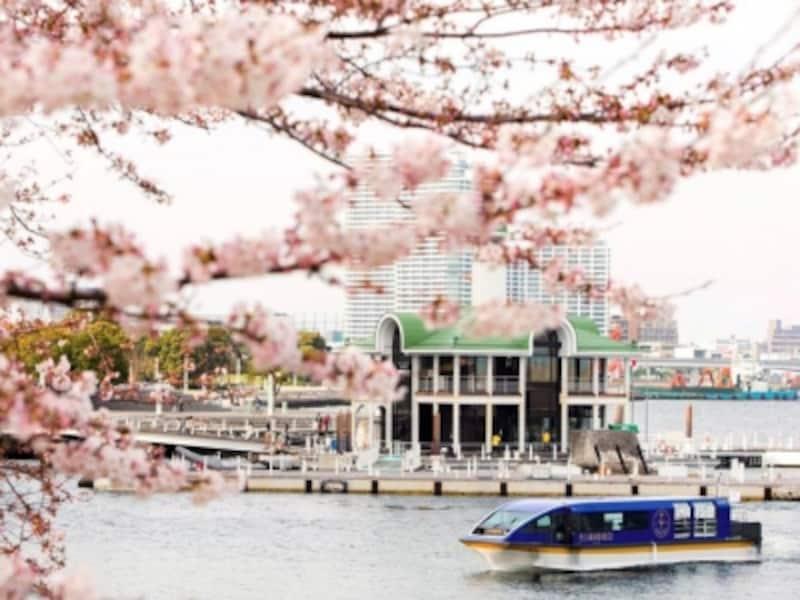 ホテル専用クルーズ船「ル・グラン・ブルー」による「大岡川桜クルーズ」の様子(画像提供:ヨコハマグランドインターコンチネンタルホテル)