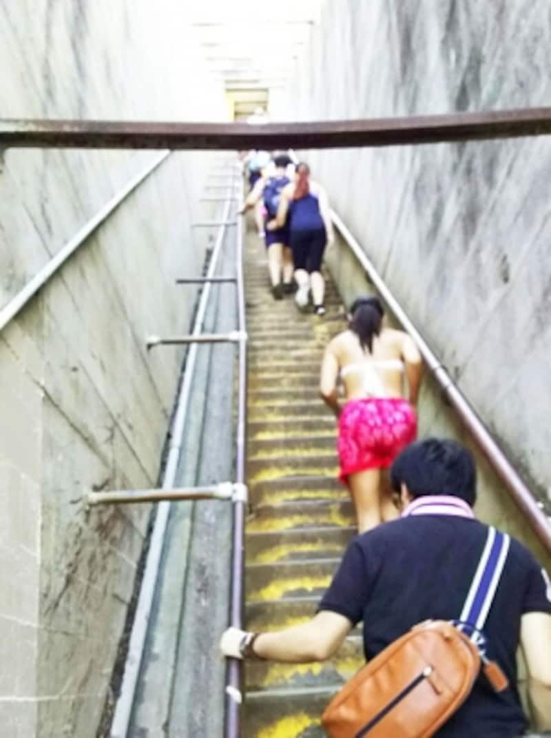長く急な99段の階段。迂回ルートもあるのでご安心を