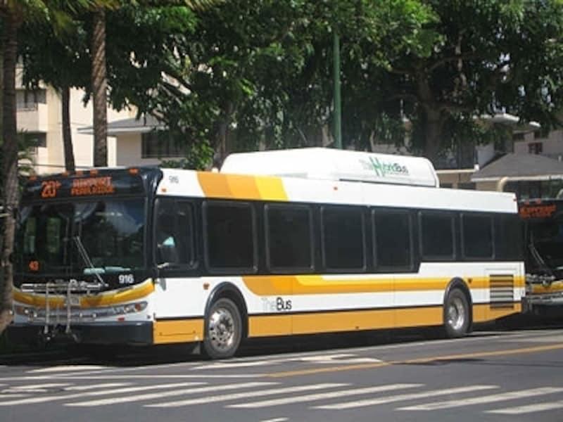 白に黄色ライン、または、白にレインボーの車体の「ザ・バス」。オアフ島唯一の公共交通機関