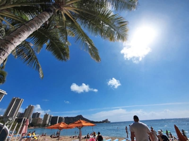 夏の日差しが眩しいワイキキビーチ