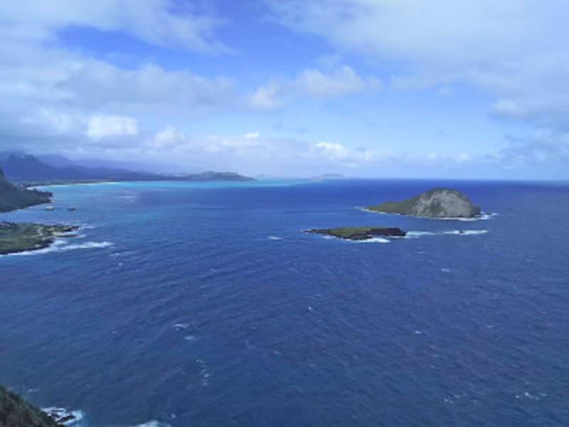 ラビットアイランドや東海岸に連なるビーチを眺める絶景展望台