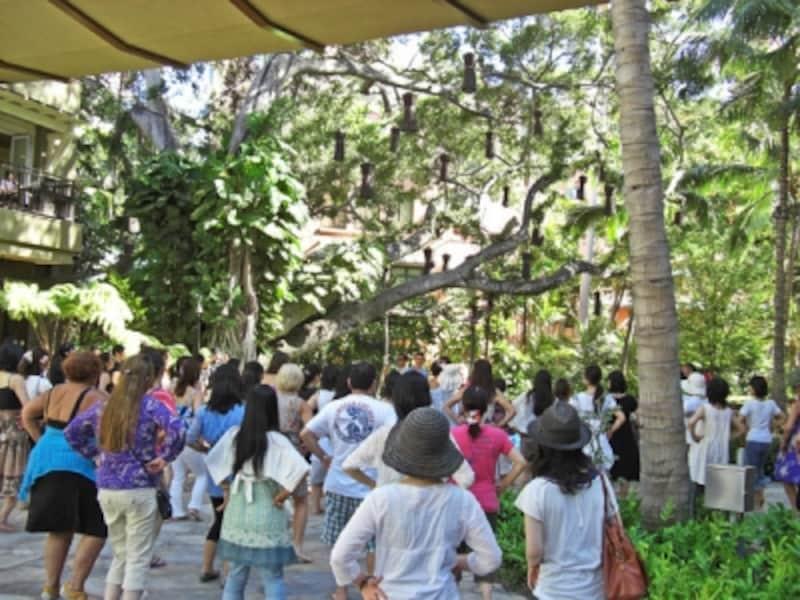 初心者も経験者も、緑に囲まれた中庭で踊れるのは貴重な体験