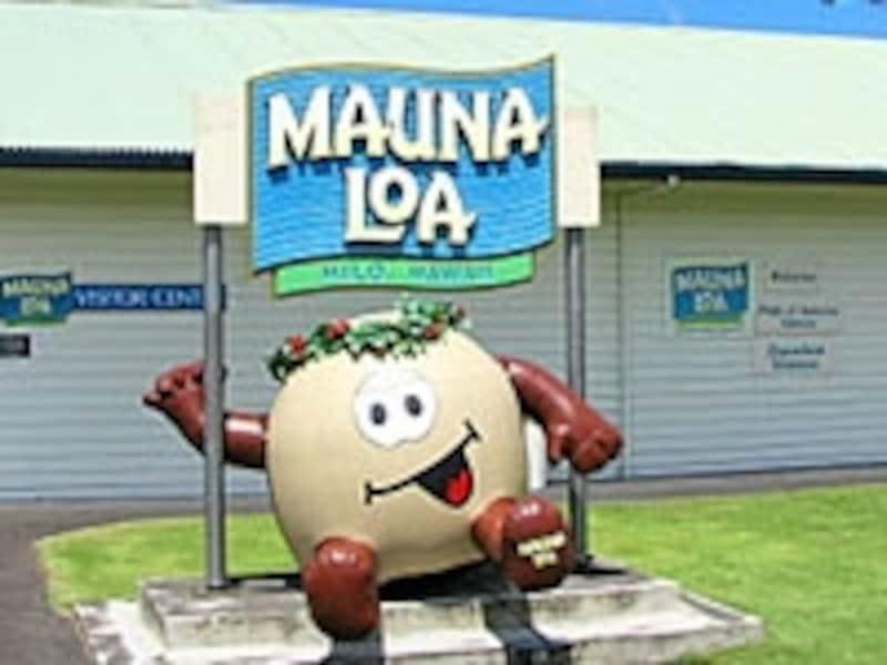 今や生産量世界No.1のハワイ島マウナロア