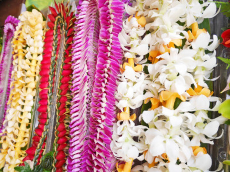 花や葉1つ1つに気持ちを込めて繋げるレイは、アロハスピリットあふれる花の首飾り