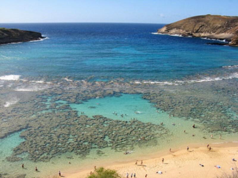 自然保護地区として管理されているハナウマベイ。遠浅の海にはサンゴ礁が広がり、トロピカルフィッシュが泳いでいる