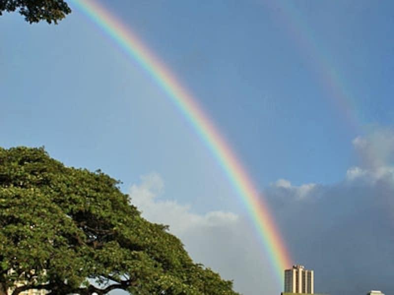 「レインボー・ステート」のニックネームをもつハワイ。朝夕にシャワーが降りやすい冬は、虹に出合える季節でもある