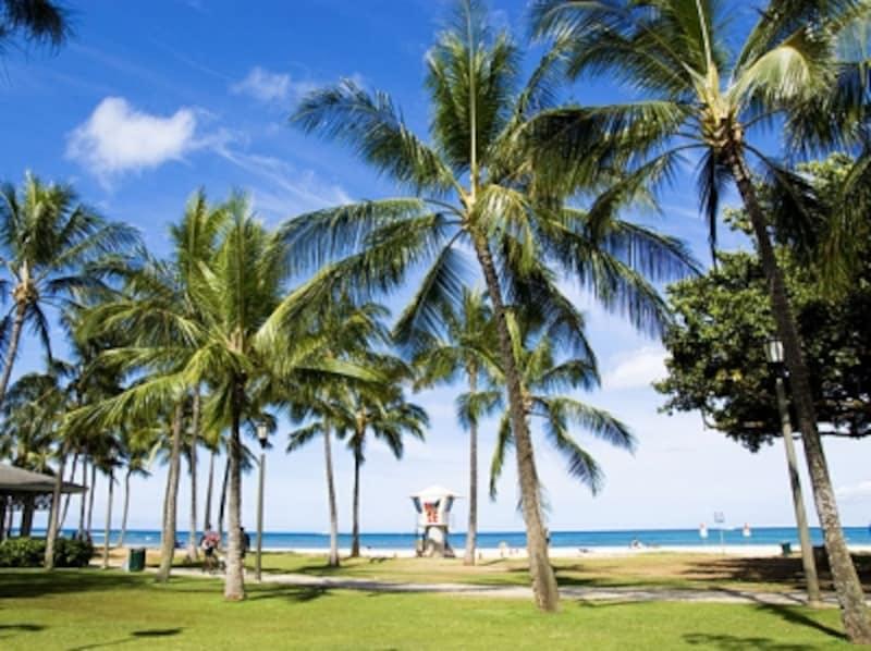 カラカウア通りからのアクセスも良好なカピオラニ・ビーチパーク。シャワー&トイレも砂浜すぐにあってとても便利