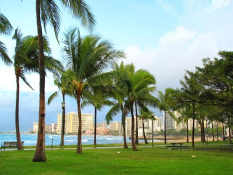 芝生からの眺めも絶景なクイーンズ・ビーチ