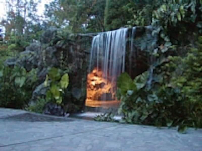 シンガポール植物園内