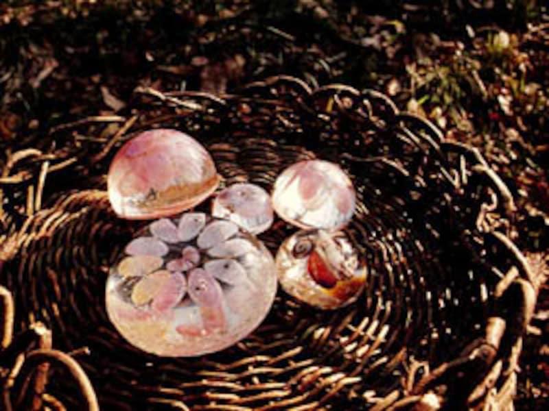 桜貝のペーパーウエイト