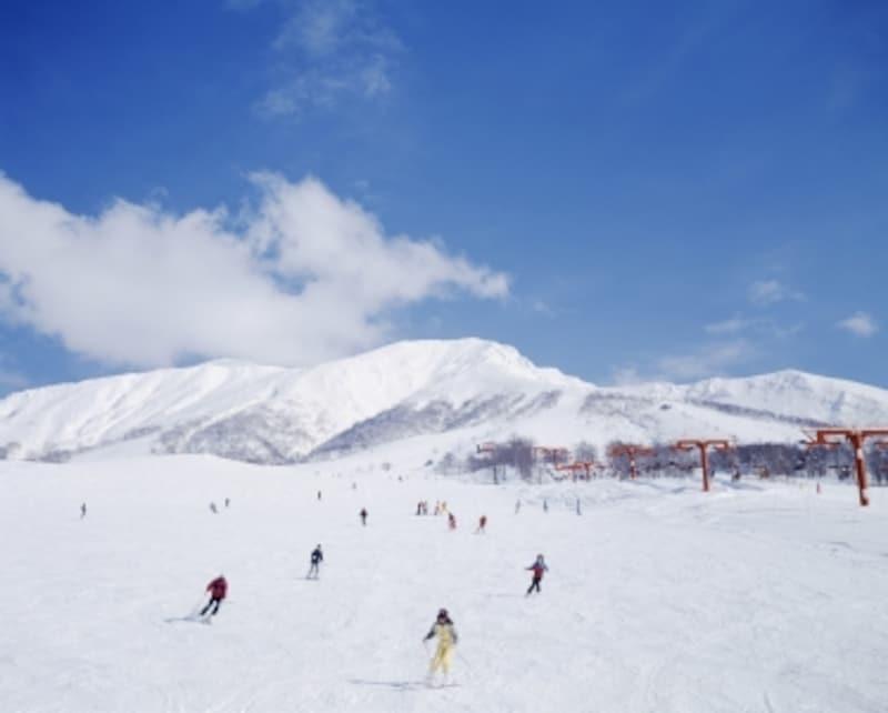 スキー保険、スノーボード保険の比較とおすすめ