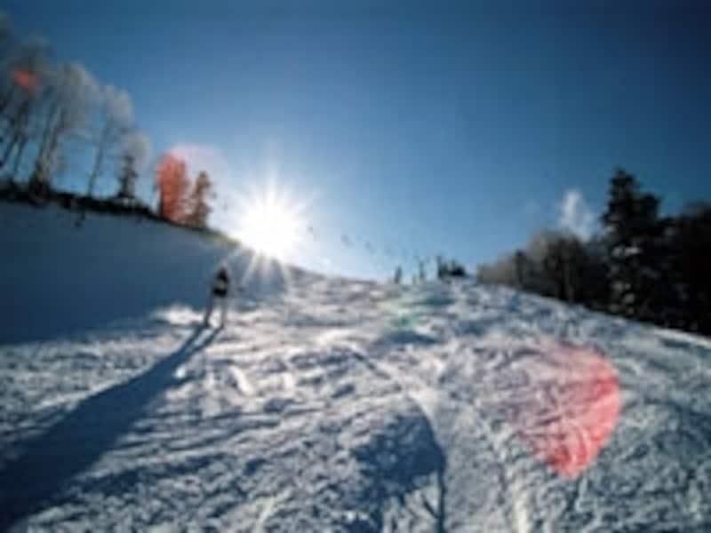 スキー保険、スノーボード保険の仕組みを理解しましょう!