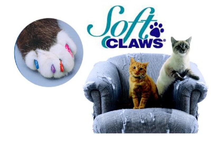 ソフトクロー,猫のおしゃれネイル スターターキット M レッド