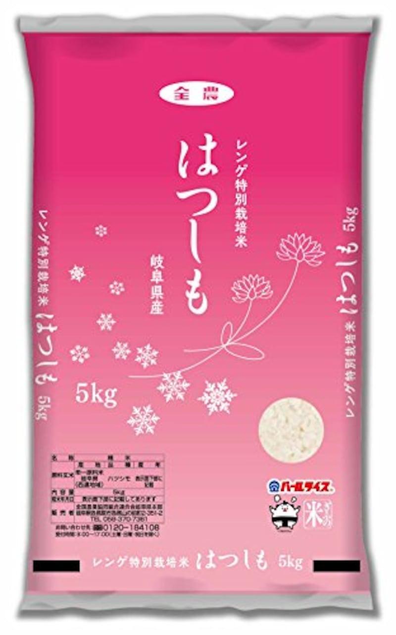 【精米】岐阜県産 白米 はつしも