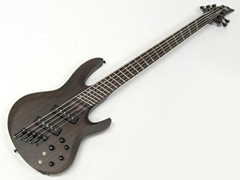 ESP,LTD B-1005SE MULTI-SCALE